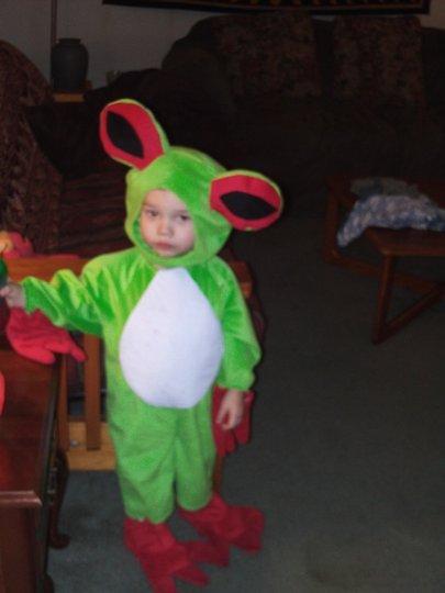 Tree_frog_small_hor