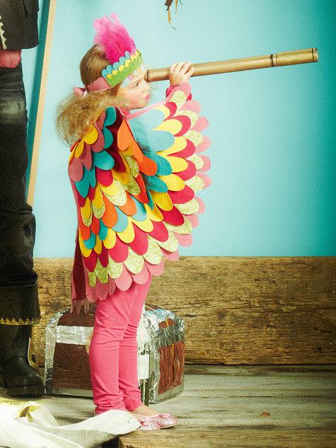 154_0113-b_parrot_large
