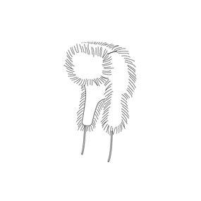 Fur Hat 10/2011 #149