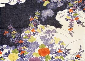 Blackberry_bold_9700_kimono_wallpaper_show