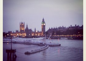Westminister_show
