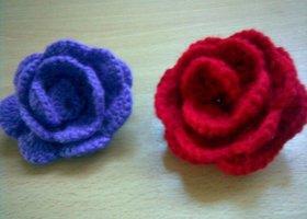 Flores_show