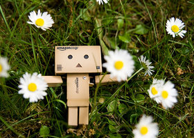 Danbo_picture_2_large_show