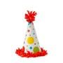 Birthday_20hat_large