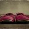 Pink_shoes_thumb