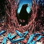 Satin-bowerbird_large