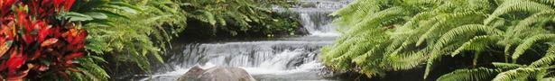 Waterfall_show