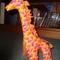Giraffe_web1_grid