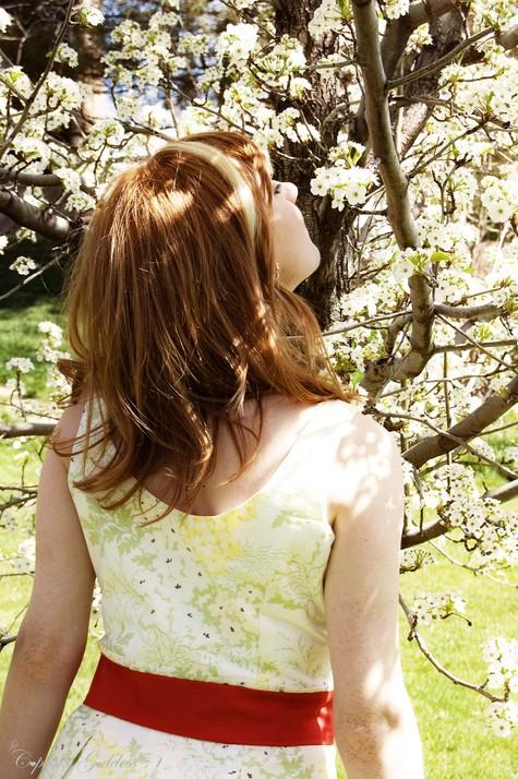 Spring_dress_5_large