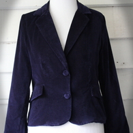 Blue_velvet_jacket_front_closed_listing