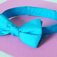 Bowtie_front_sm_listing