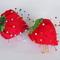 Strawberry1_grid