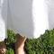 Burda_dress_hem_grid