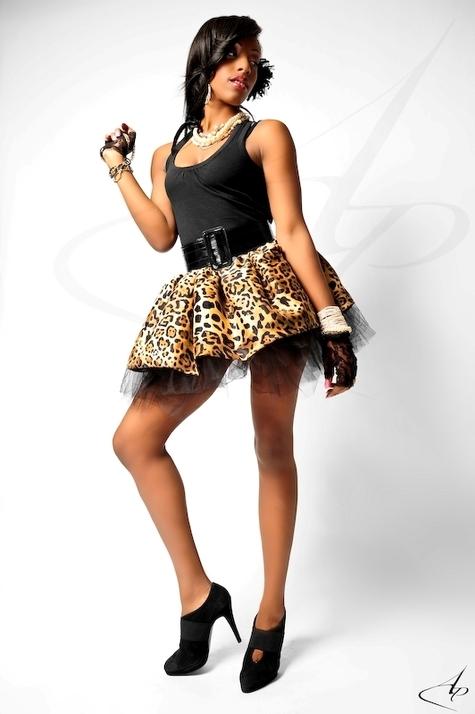 Cheetah_large