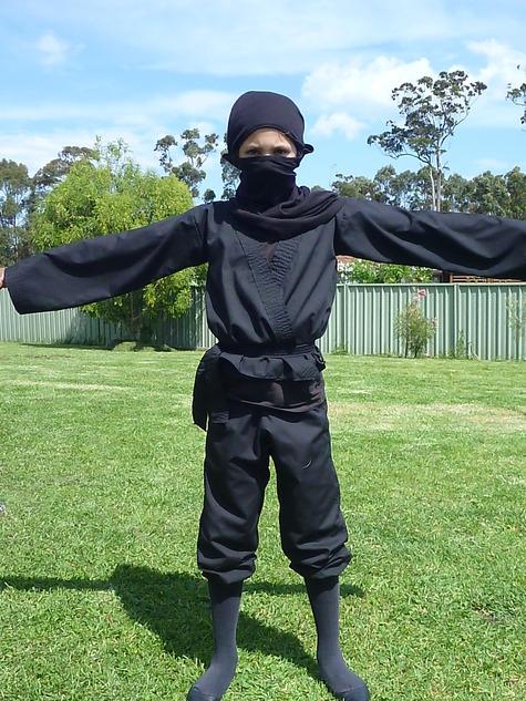 Ninja_large
