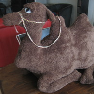 Camel_i_004_listing