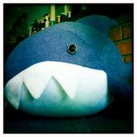 Shark_1_listing