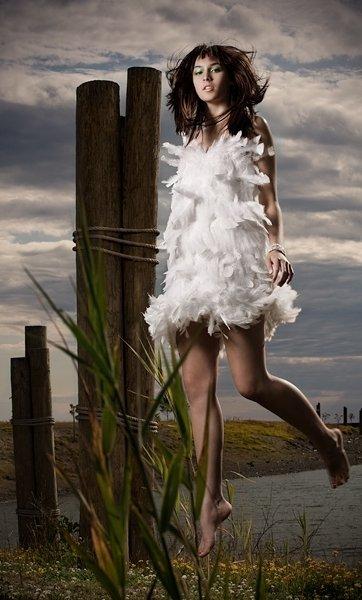 Feathers3_large