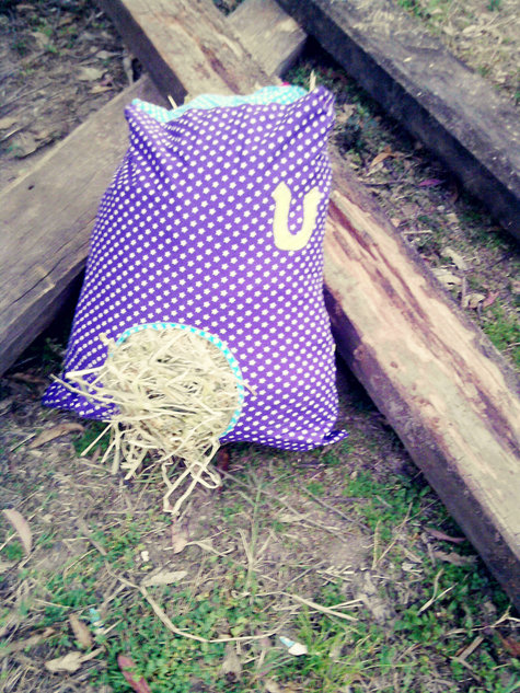 How To Make A Hay Bag For Your Horse Or Pony Sewing