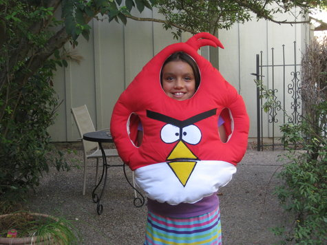 5_k_redbird_large