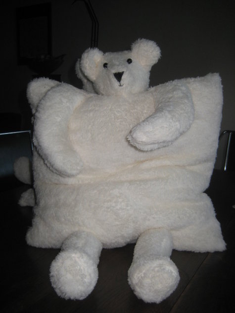 Scater_teddy_004_large