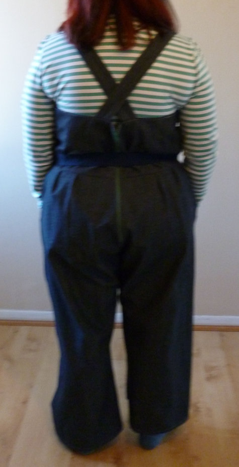 Overalls_back_large