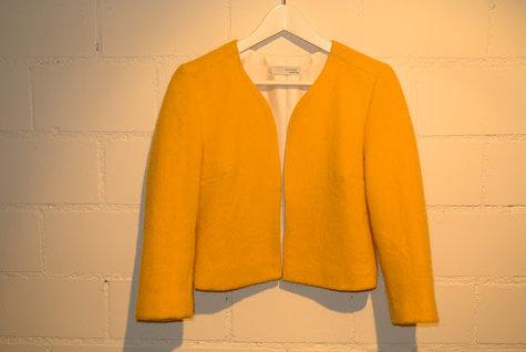 Yellow_jacket4_large