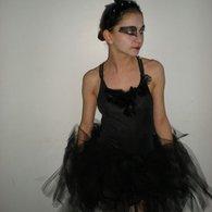 Cygne_noir_2_listing