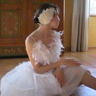 Cygne_blanc_2_listing