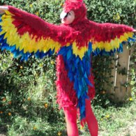 Polly-parrot-costume-_3_-2012_listing