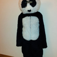 Panda_listing