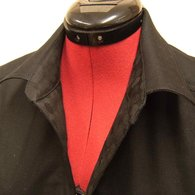 Collar_detail_listing