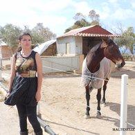 Horse_dress_2__listing