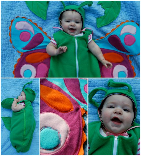 Babybutterflycollage_large