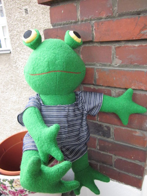Frog_large