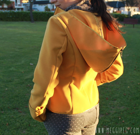 Yellow_jacket_6_large