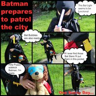 Batman_collage_1_listing