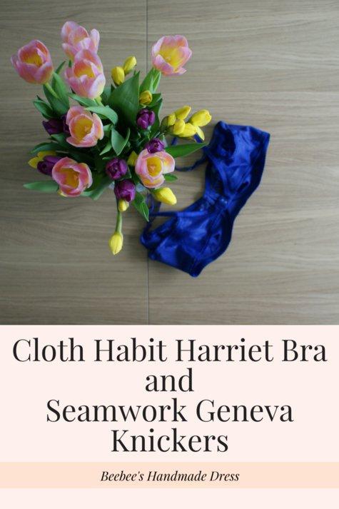 Cloth_habit_harriet_bra_andseamwork_geneva_knickers_large