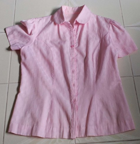 Pink_blouse_large